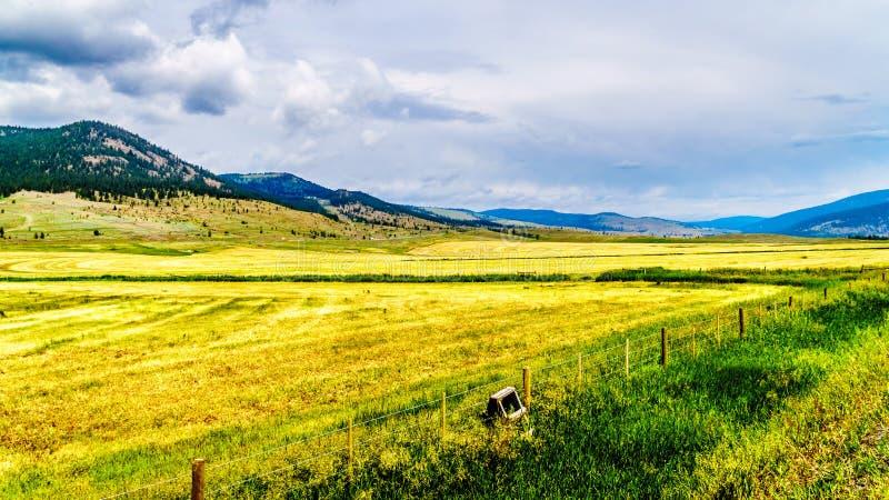 Terre de ranch dans Nicola Valley en Colombie-Britannique, Canada photos libres de droits