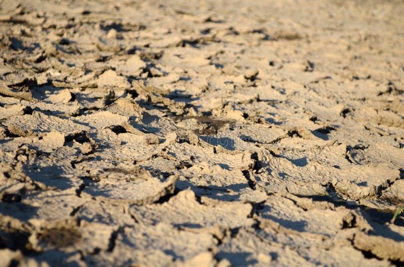 Terre del deserto immagine stock libera da diritti