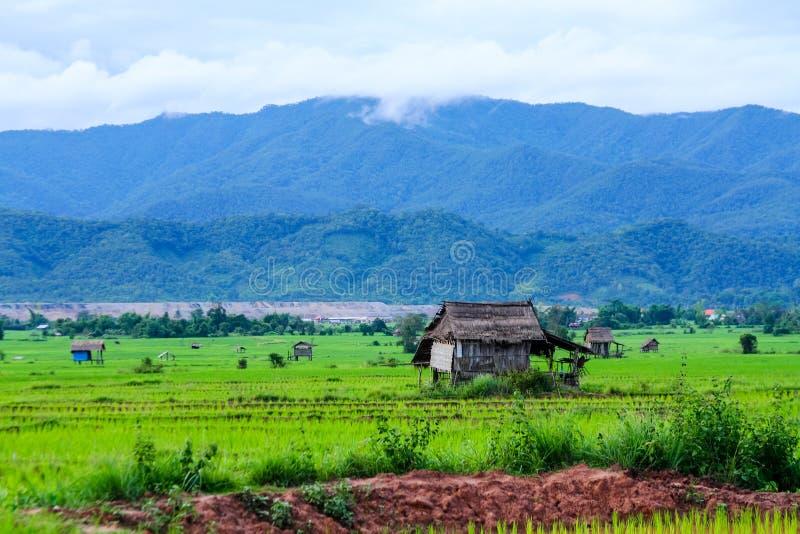 Download Terre et maison de Hongsa image stock. Image du environnement - 45352335