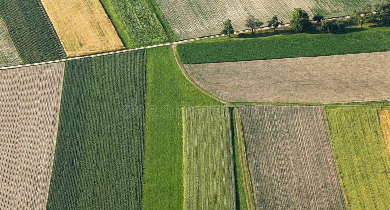 Terre fraîchement labourée et semée de ferme d'en haut photo libre de droits