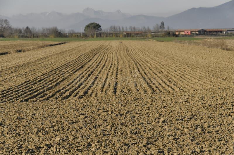 Terre labourée dans une ferme photos libres de droits
