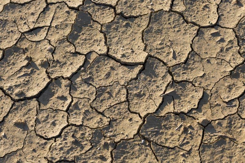 Terre sèche, la terre criquée, sans eau images libres de droits