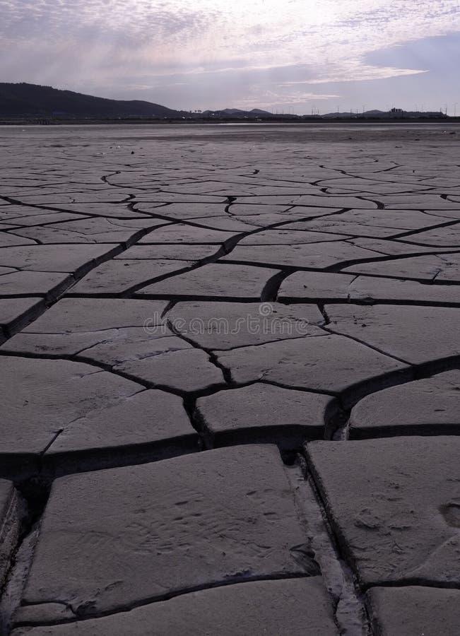 Terre salée sèche et criquée images stock