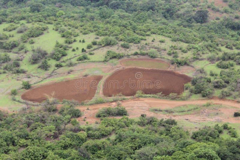 Terreno agricolo diviso in due parti fotografie stock libere da diritti