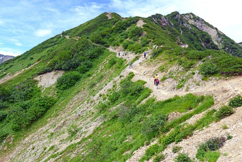 Terreno alpino en el soporte Karamatsu, montañas de Japón imagenes de archivo