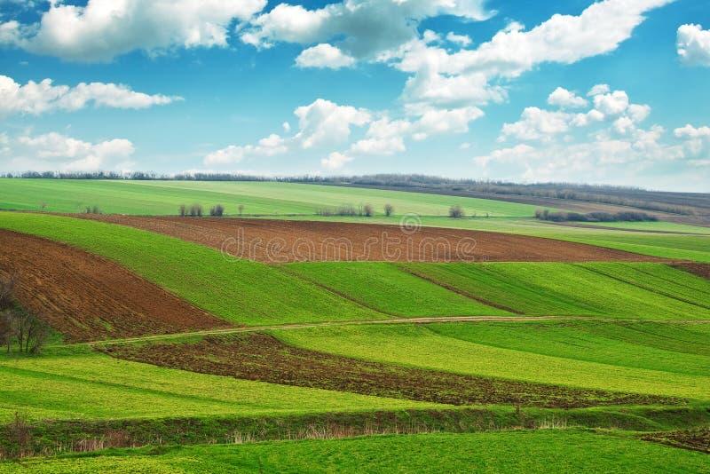 Terreno arabile fotografia stock libera da diritti