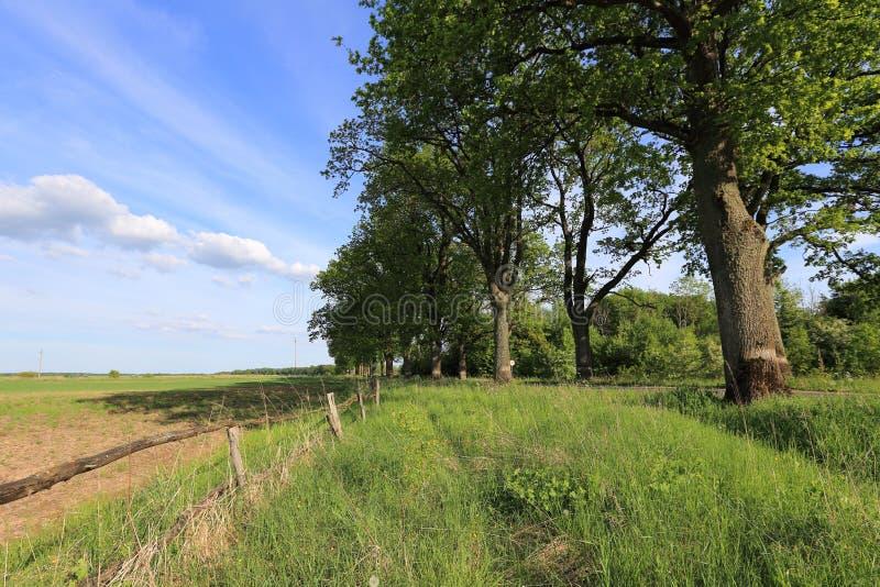 Terreno arabile fotografie stock