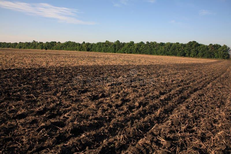 Terreno arabile immagini stock libere da diritti