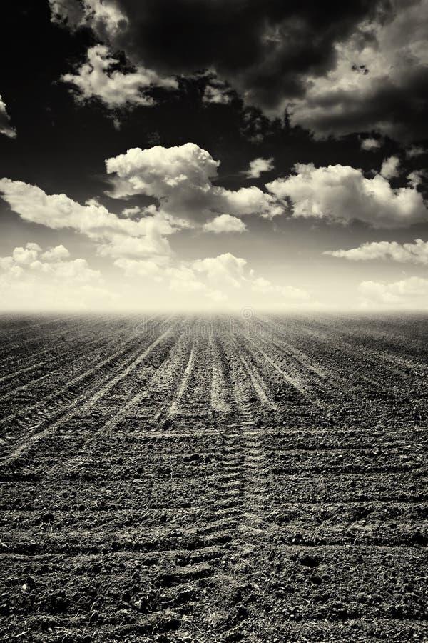 Terreno arabile abbandonato fotografia stock