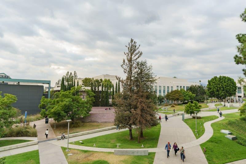 Terreno bonito da faculdade da cidade de Pasadena fotografia de stock