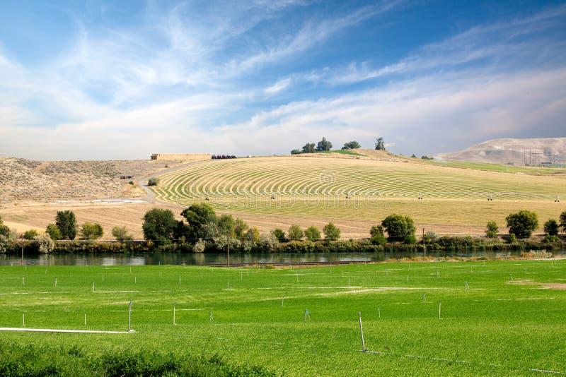 Terreno coltivabile con il perno concentrare contro irrigazione a pioggia fotografie stock libere da diritti
