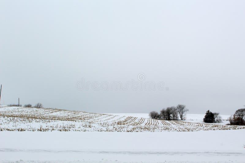 Terreno coltivabile della nebbia di inverno con Rolling Hills nel sud-ovest Iowa fotografie stock libere da diritti
