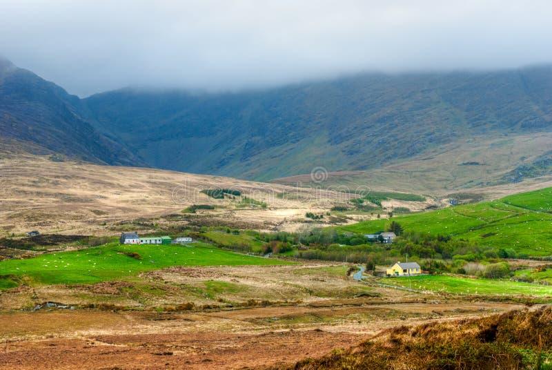 Terreno coltivabile in Irlanda fotografia stock
