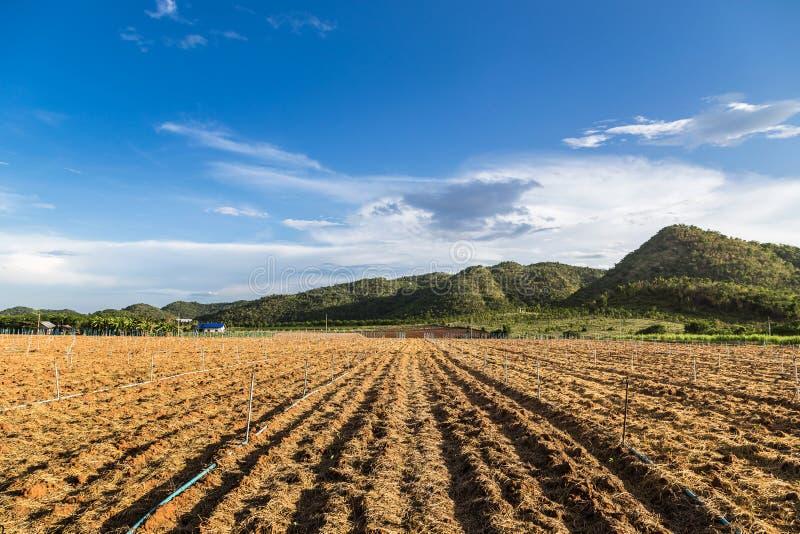Terreno coltivabile in montagna della valle fotografie stock libere da diritti