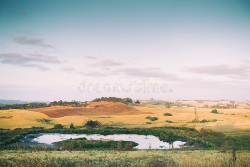 Terreno coltivabile rurale dell'Australia con la diga immagine stock libera da diritti