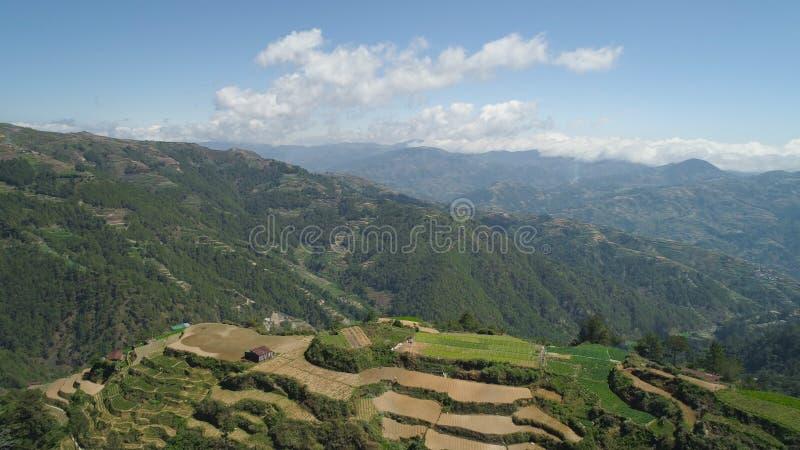 Terreno coltivabile in una provincia Filippine, Luzon della montagna fotografia stock libera da diritti
