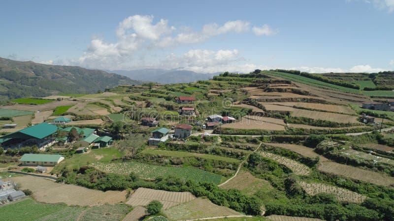 Terreno coltivabile in una provincia Filippine, Luzon della montagna immagini stock