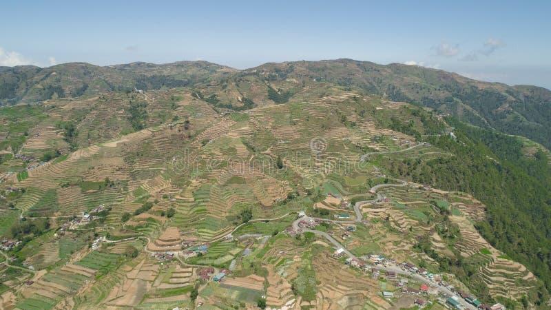 Terreno coltivabile in una provincia Filippine, Luzon della montagna immagini stock libere da diritti