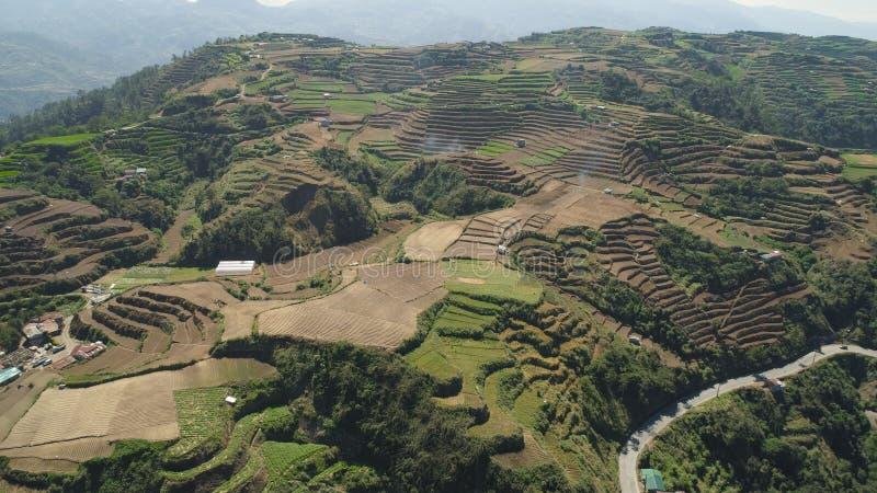 Terreno coltivabile in una provincia Filippine, Luzon della montagna immagine stock