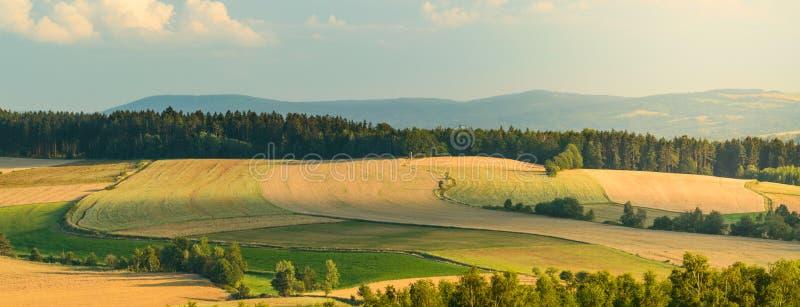 Terreno coltivabile variopinto fra le foreste nelle montagne fotografie stock libere da diritti
