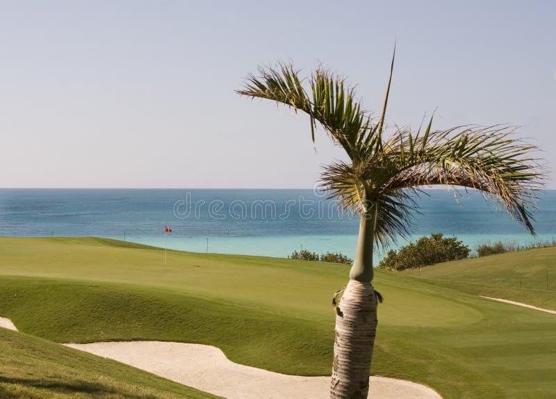 Terreno da golf in Bermude fotografia stock