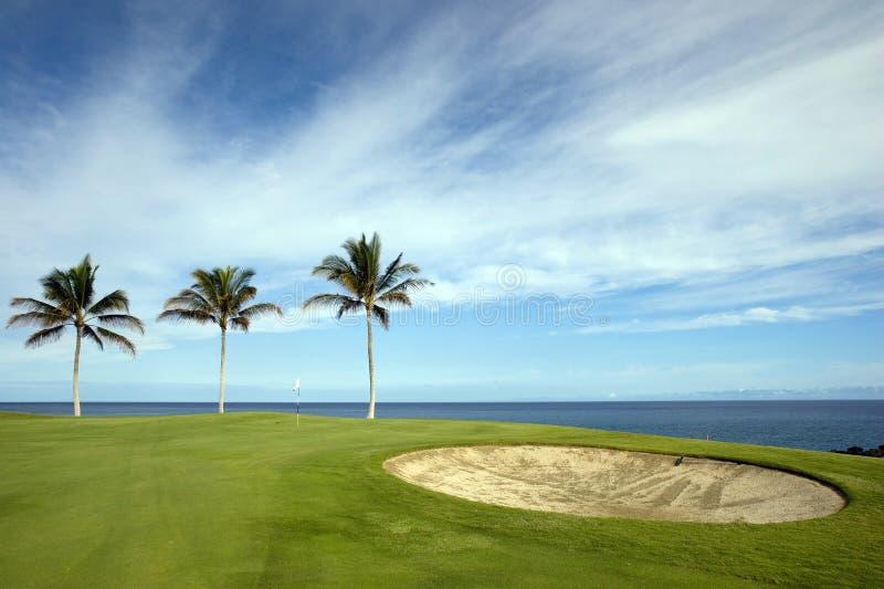 Terreno da golf dell'Hawai immagine stock libera da diritti