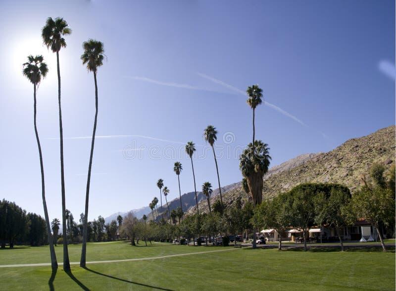 Terreno da golf Palm Spring immagine stock libera da diritti