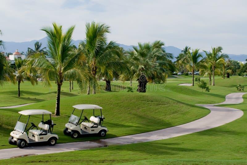 Terreno da golf tropicale immagine stock