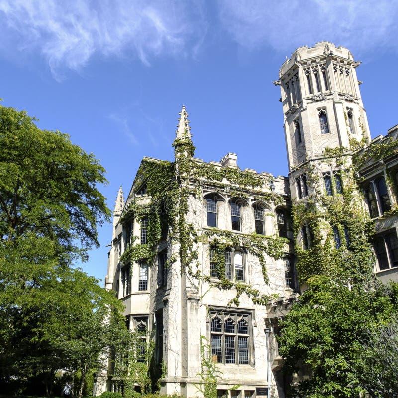 Terreno da Universidade de Chicago foto de stock