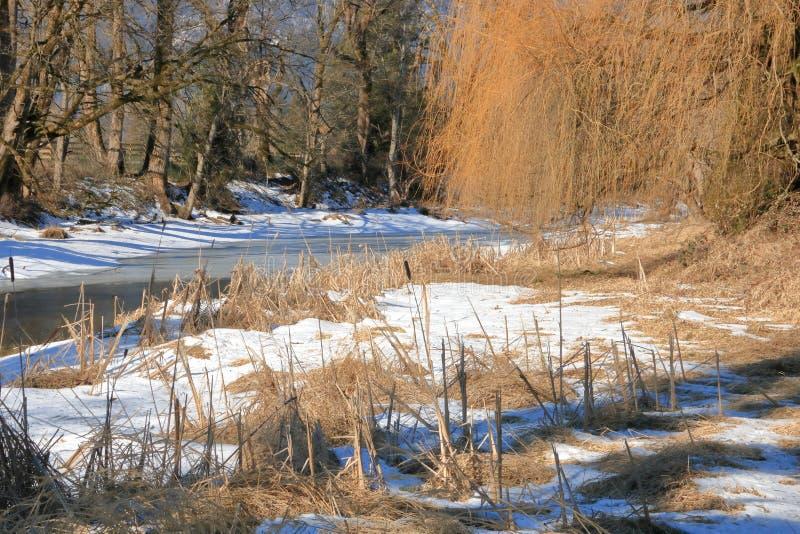Terreno del río durante invierno foto de archivo