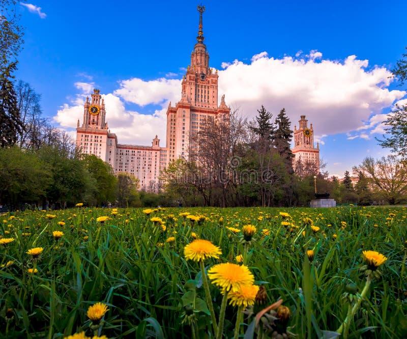 Terreno do por do sol da universidade estadual de Lomonosov Moscou sob o céu nebuloso com dentes-de-leão amarelos imagens de stock