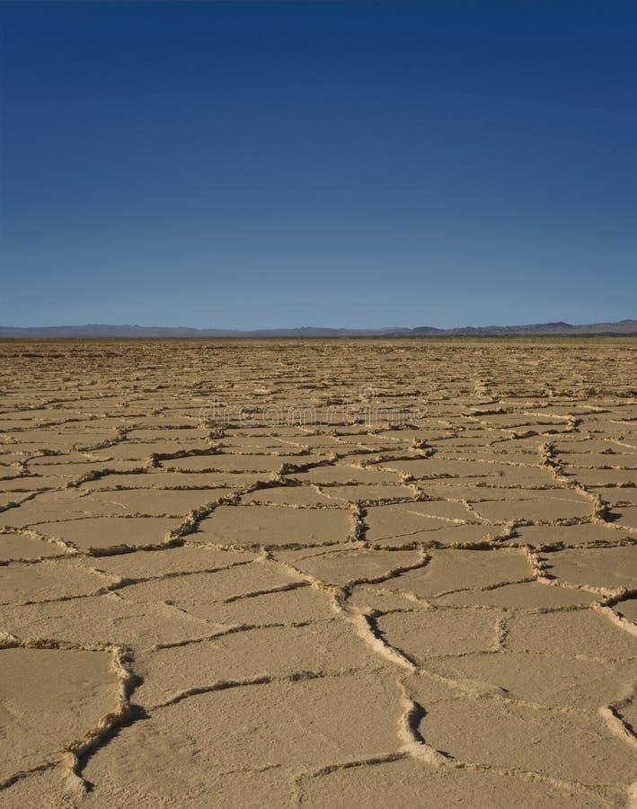 Terreno incolto del deserto fotografie stock libere da diritti