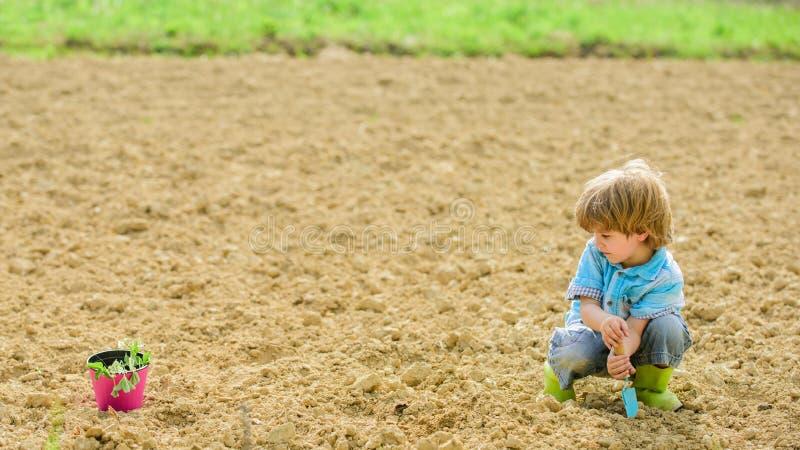 Terreno naturale Nuova tecnologia nell'agricoltura piccolo bambino che pianta un fiore Vita di ecologia Azienda agricola di Eco E fotografia stock libera da diritti