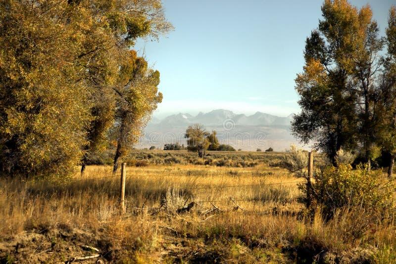 Terres antiques de territoire du Wyoming photo stock