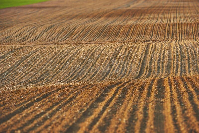 Terres arables fraîchement semées images stock