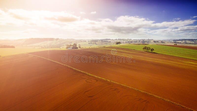 Terres cultivables dans l'Australie photo libre de droits
