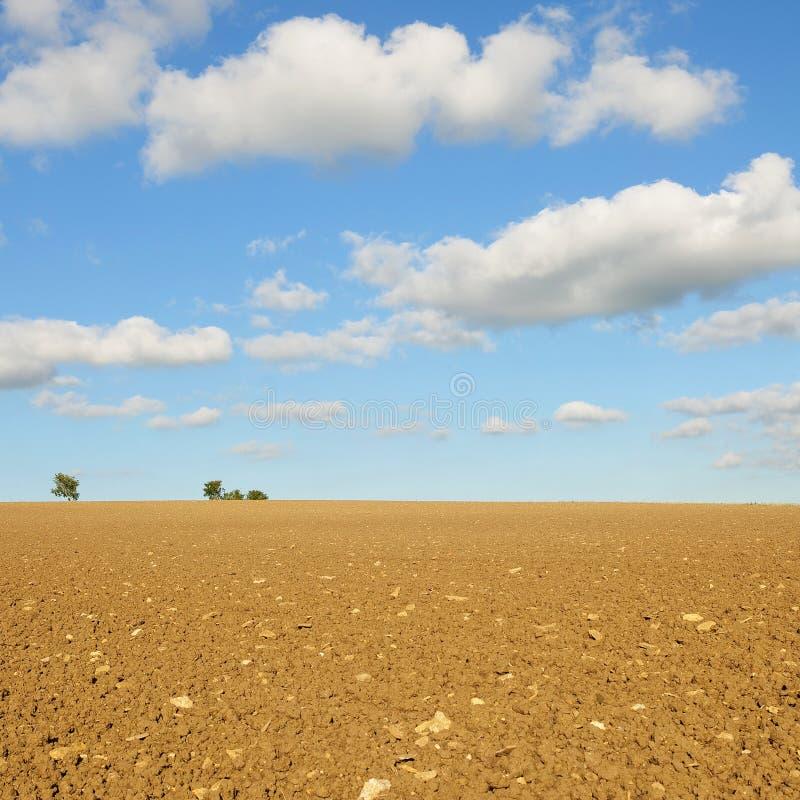 Terres cultivables de source avec le beau ciel bleu ci-dessus photo stock