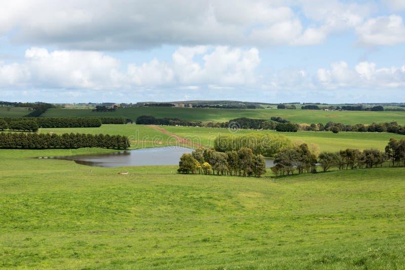 Terres cultivables luxuriantes, Victoria du sud, Australie photographie stock libre de droits