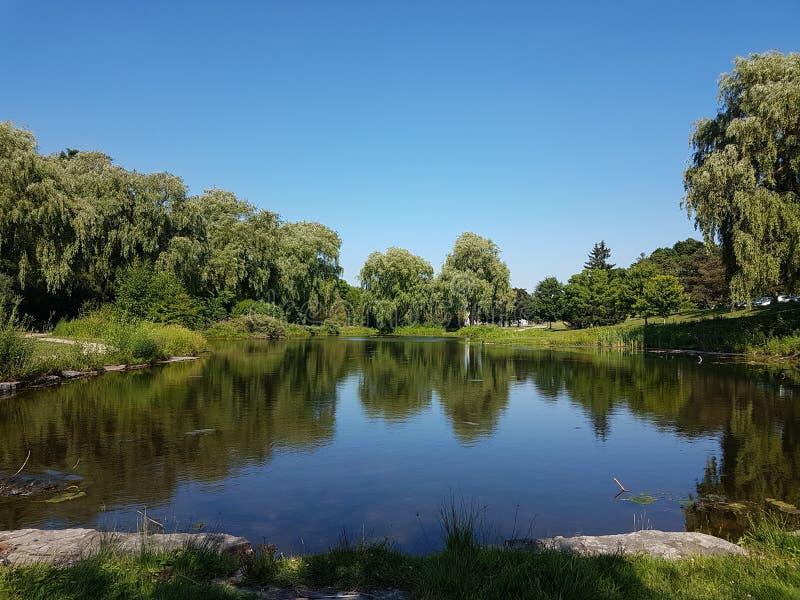 Terres humides en parc photographie stock libre de droits