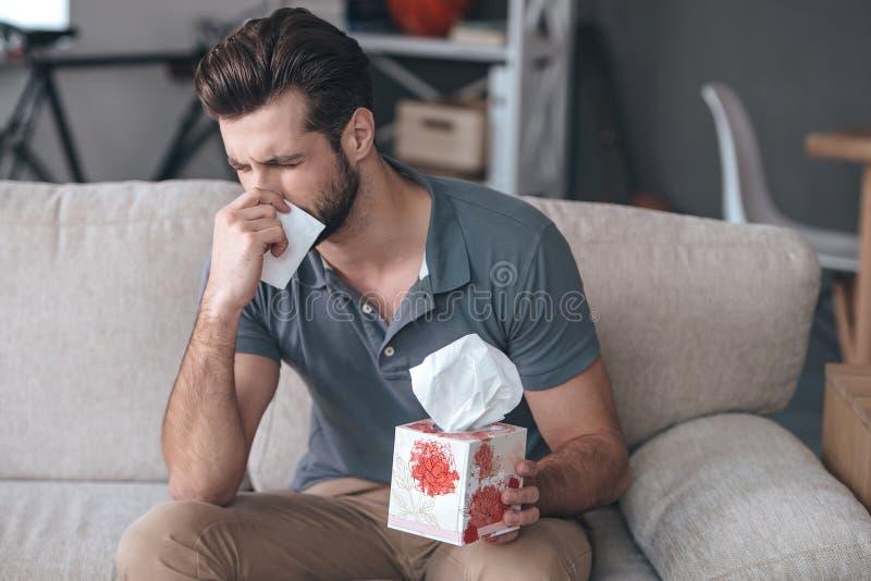 Terrible allergy. royalty free stock photo