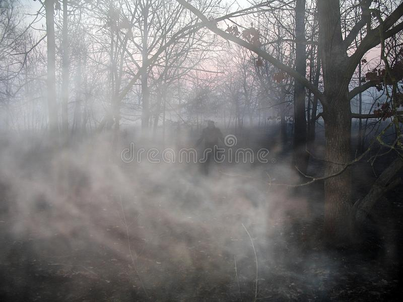 The terrible dark figure of a man in a bare forest in the fog in the twilight. Landscape of the terrible dark figure of a man in a bare forest in the fog stock image