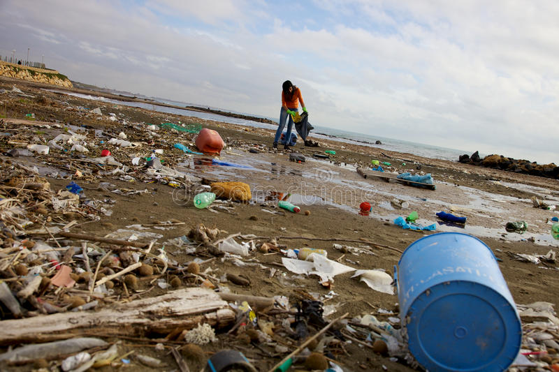 Terrible ecological disaster woman clean dirty beach royalty free stock photo