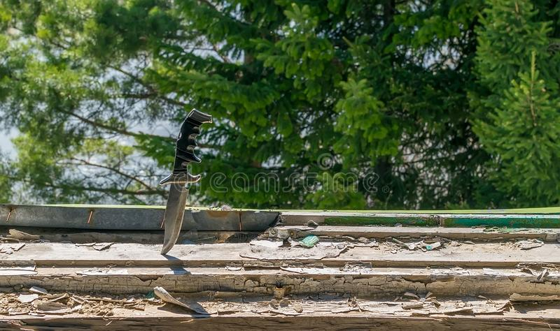 A terrible old combat knife. Stuck in the ruined window sill of an abandoned house on the background of green leaves of a coniferous tree stock photos