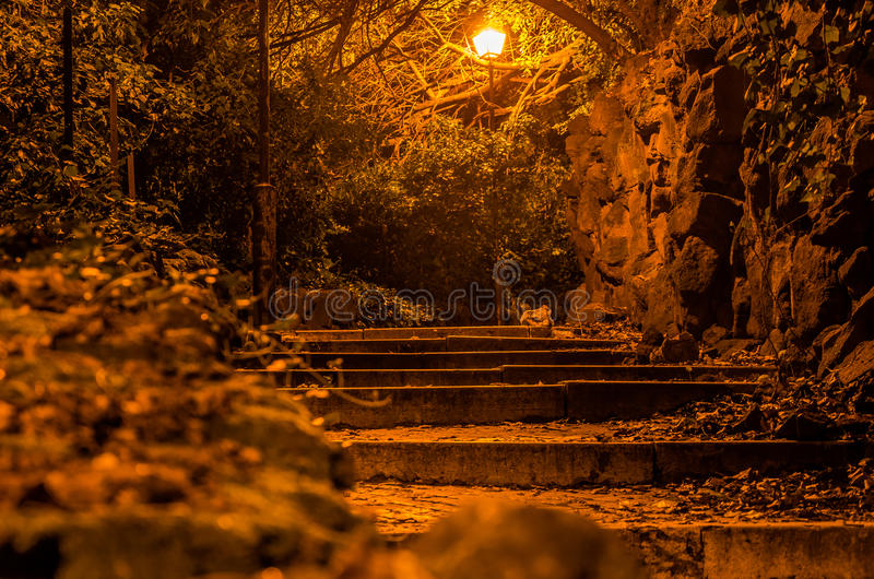A terrible road with stairs in the night park paving stones paved with stone balustrade in the trees with lights streetlight in Ro. Me Italy stock photography