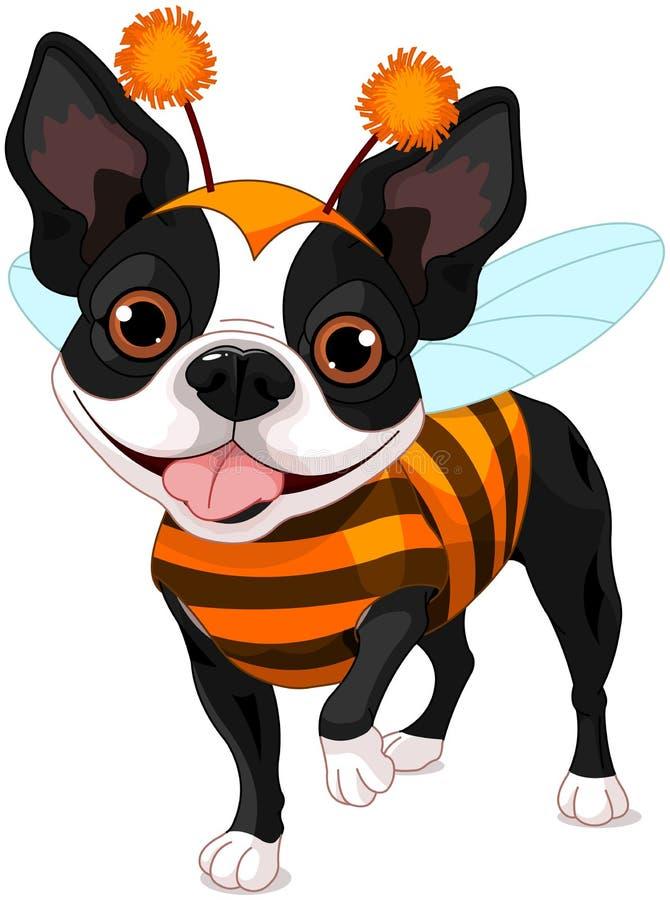 Download Terrier De Halloween Boston Illustration de Vecteur - Illustration du invitation, retrait: 45362925