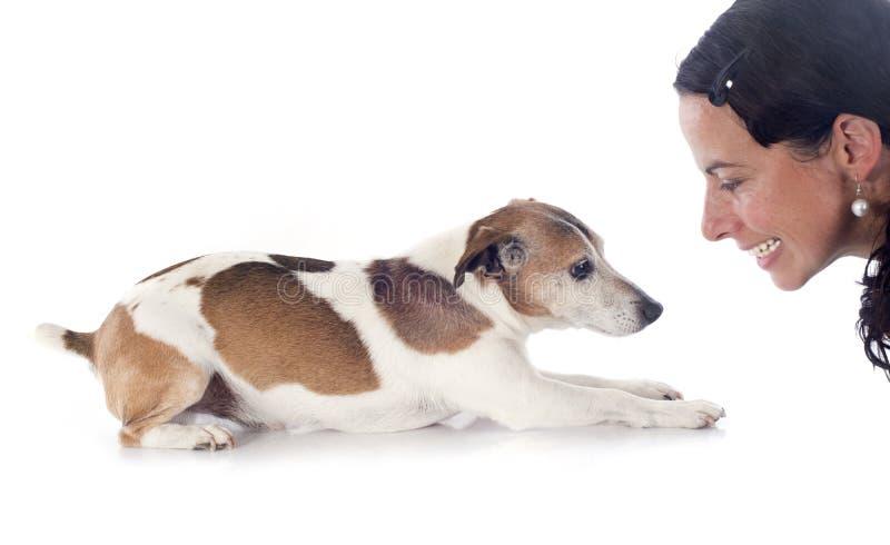Terrier e donna di Jack Russel immagine stock libera da diritti