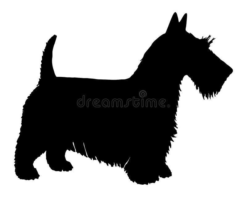 Terrier escocês ilustração royalty free