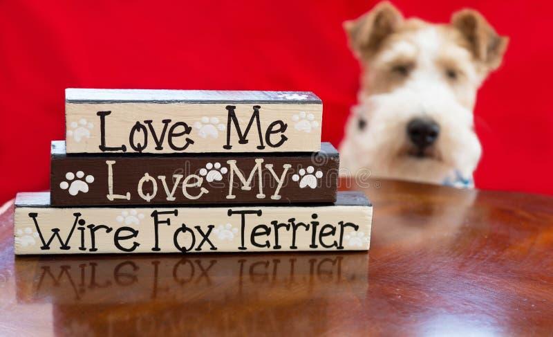 Terrier förälskelse arkivfoto