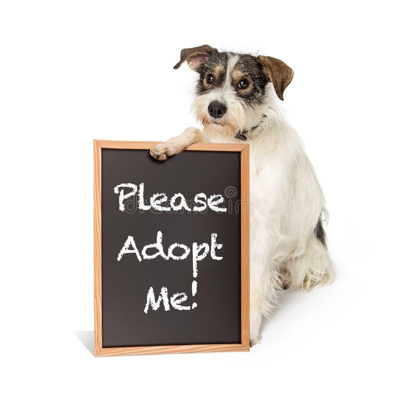 Terrier-Hundeholding nehmen mich Zeichen an stockbilder