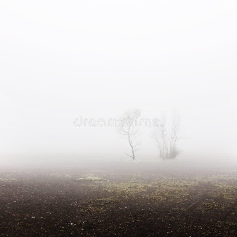 Terril krajobraz fotografia stock